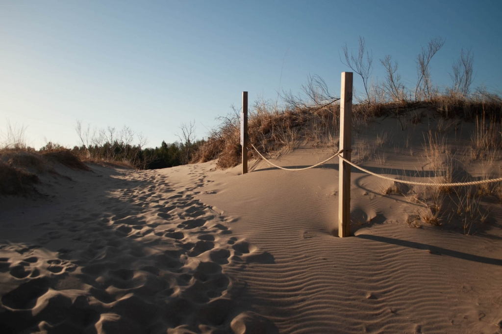 Trail posts on a dune