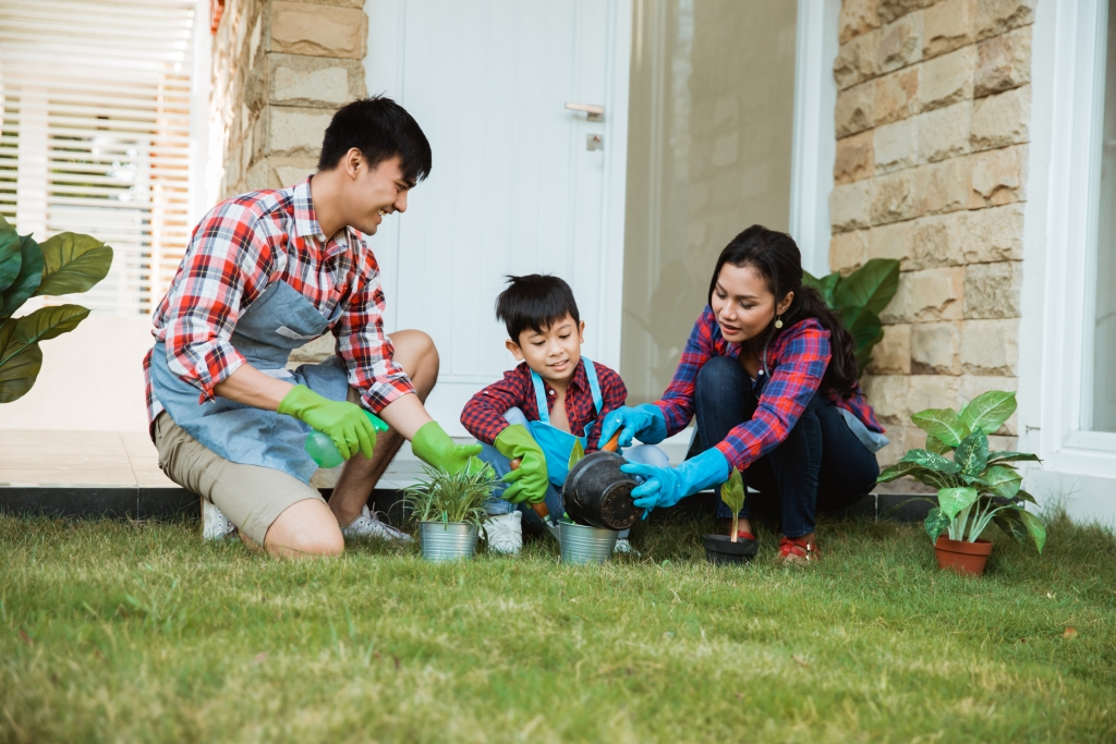 parent and son gardening activity outdoor in the garden house. asian family planting a new tree together